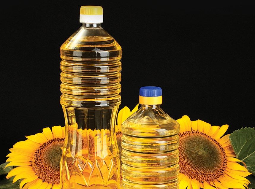 Ukraine Sunflower Export Scales New Heights, India Remains the Major Importer