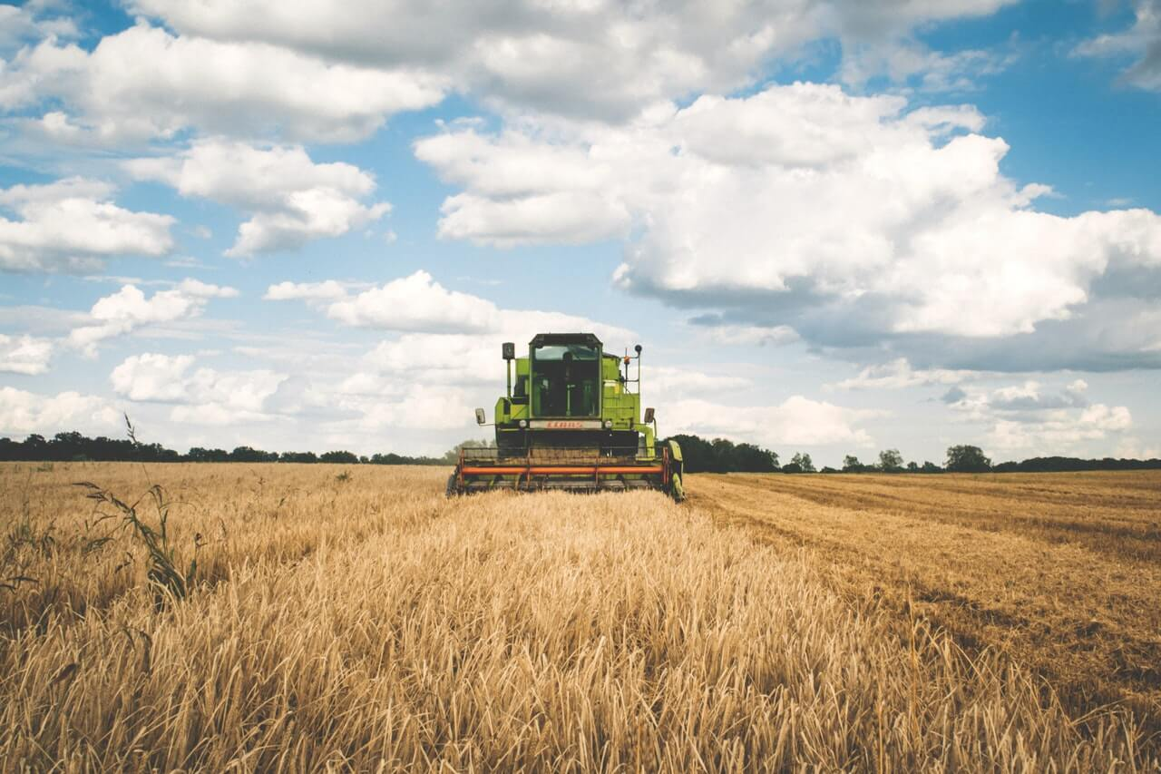 USDA reports a lower trade of market wheat, corn and oats last week