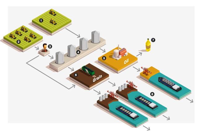 Kernel Holding SA: A world-leading sunflower oil producer