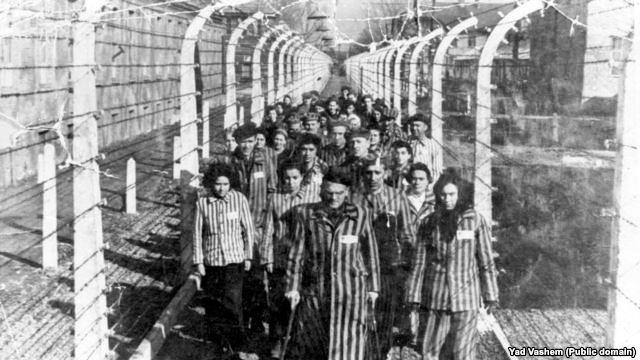 Ukraine and Auschwitz: history and politics