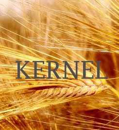 Kernel publishes Q1 FY2016 financial report