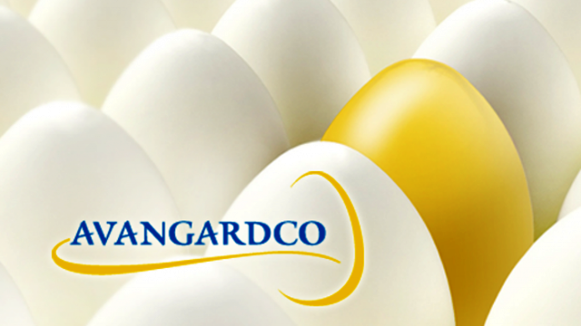 Avangardco reports positive 2016 EBITDA